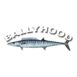 Ballyhood